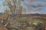 HRes oilonboard.Hawthorn on the Helmsdale River.jpg