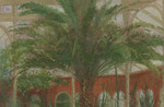 Fred Dubery, Conservatory Palm